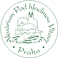 Akvárium Pod hladinou Vltavy Logo